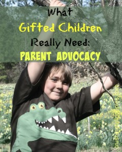 how to support my gifted child