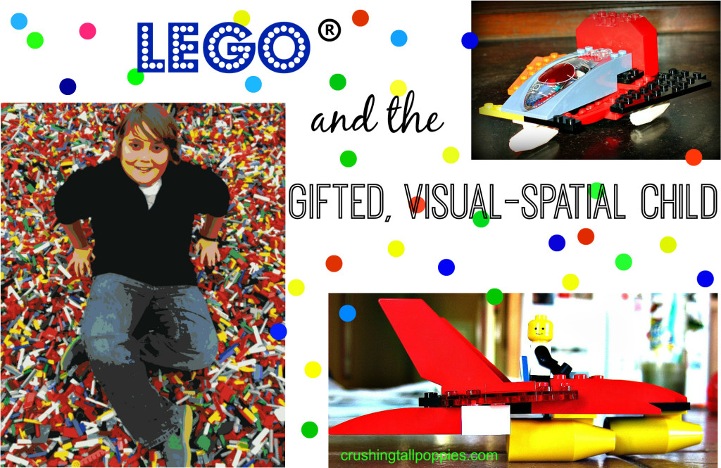 Gifted visual spatial learners