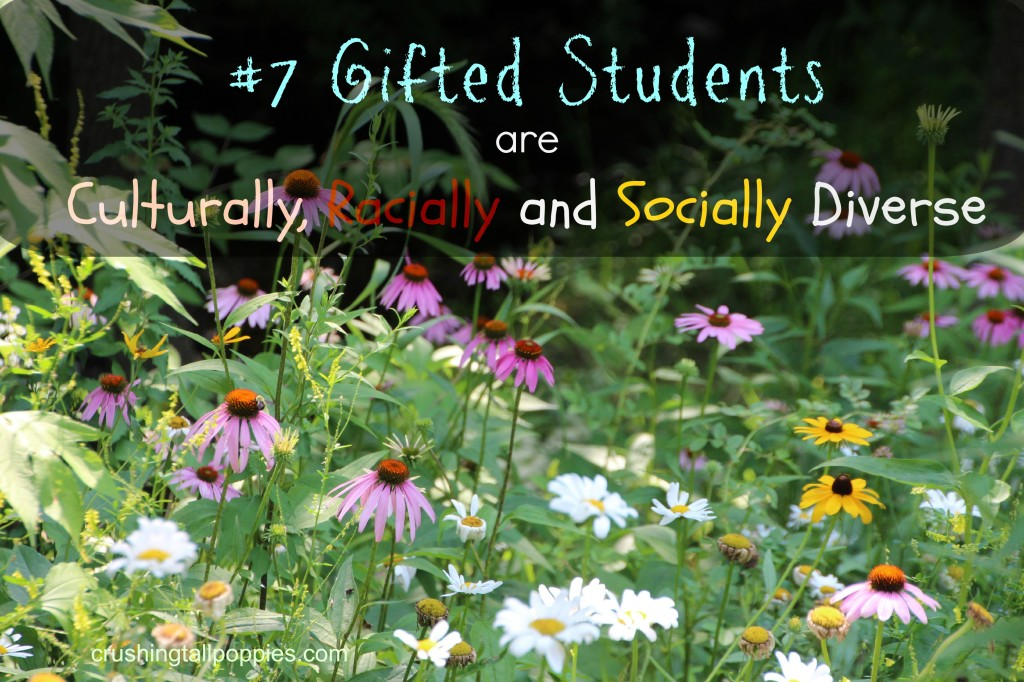 Giftedness is Diverse