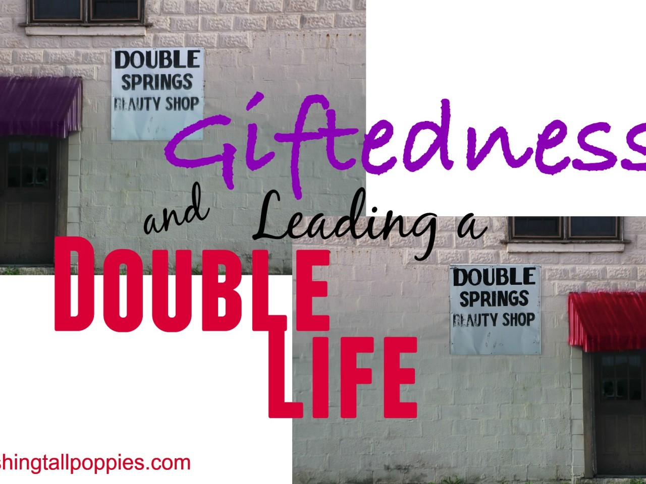 Giftedness and Leading a Double Life