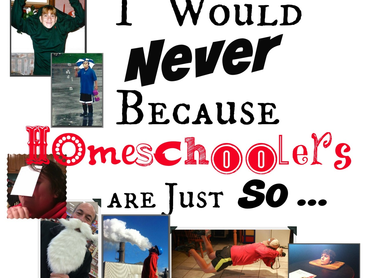 I Would Never Because Homeschoolers are Just So...3