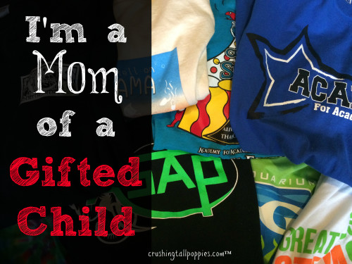 I'm a Mom of a Gifted Child