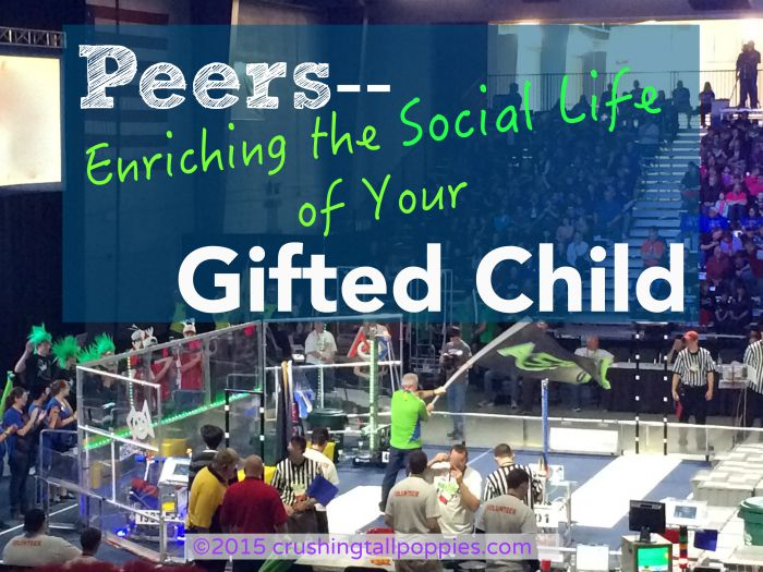 Peers--Enriching the Social Life of Your Gifted Child