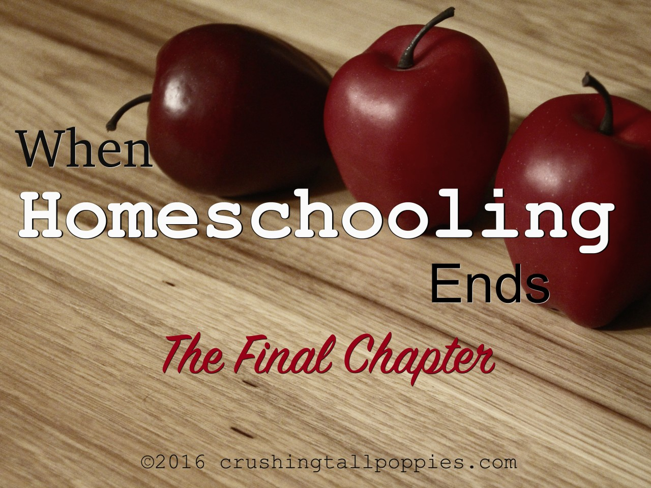 When Homeschooling Ends The Final Chapter