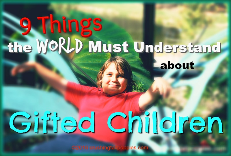 9 Things the World Must Understand About Gifted Children