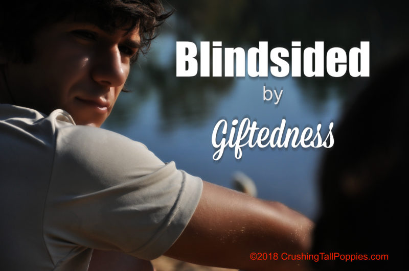 Intellectually Gifted Students Often >> Blindsided By Giftedness Crushing Tall Poppies